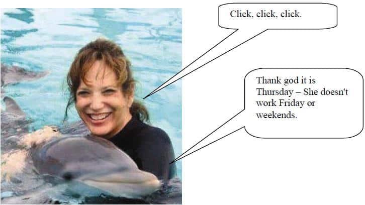 Linda Dolphin 2