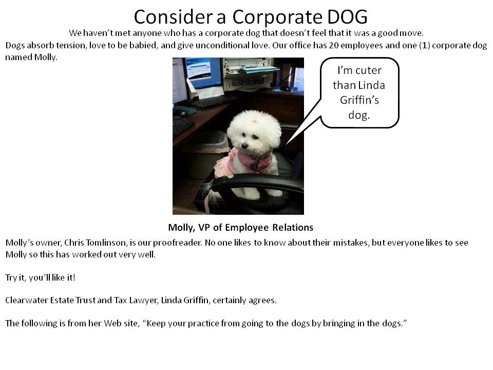 Consider a Corporate DOG